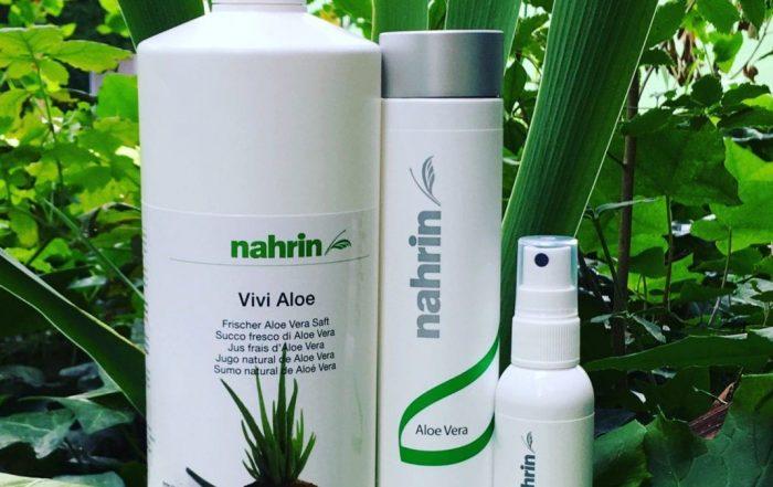 Beneficios del Aloe Vera