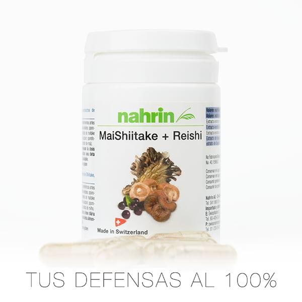 Maishiitake para subir defensas